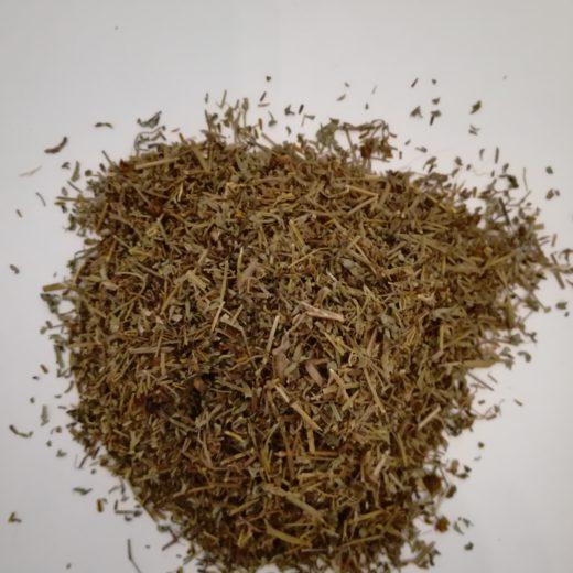 Chrysanthenum americanum