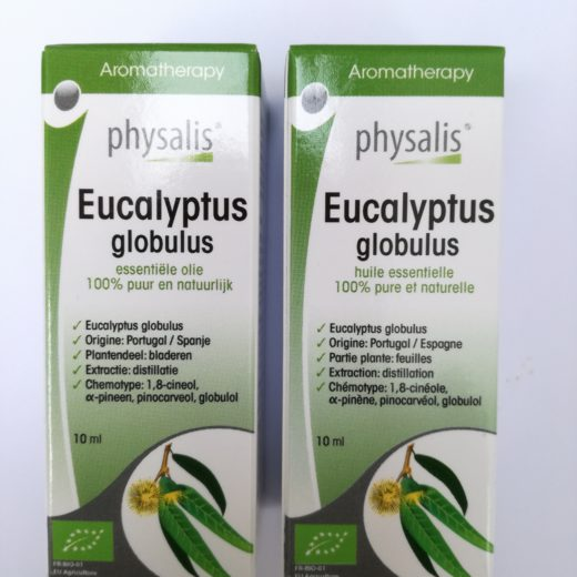 Eucalyptus globulus duo