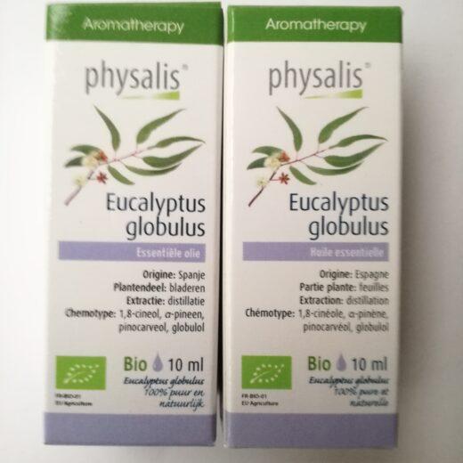 Eucalyptus globulus 10 ml Promo